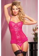 Paisley Pleasure 2pc Bustier-pink-l